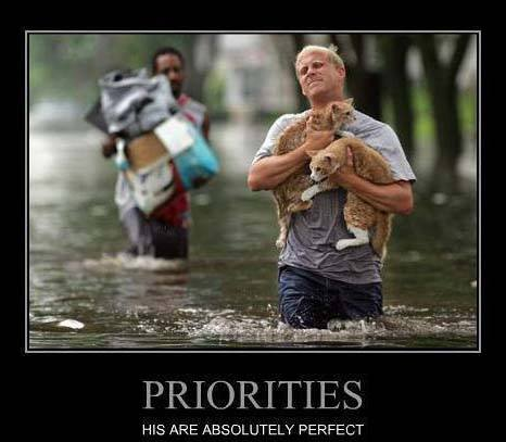 Priorities: His are absolutely perfect!