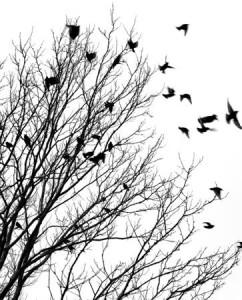 Problem Worry Tree